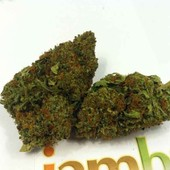 LA Confidential - www.iambud.org