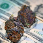 $$$ and Purp