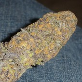grand daddy purple weed