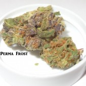Perma Frost