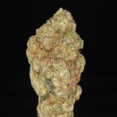 Venus OG Cannabis