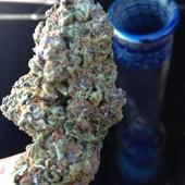 Purple Tonic nug