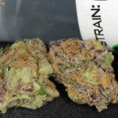 Grape Ape Buds