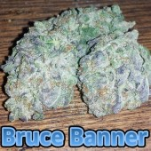 Bruce Banner buds