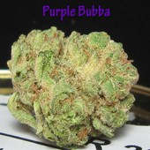 Purple Bubba