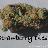 Strawberry Sour Diesel