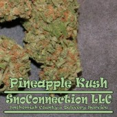 Fully Cured Pineapple Kush From SnoConnection!