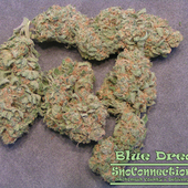 Blue Dream NW Style