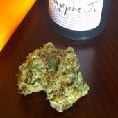 Pineapple Jack (Algea)